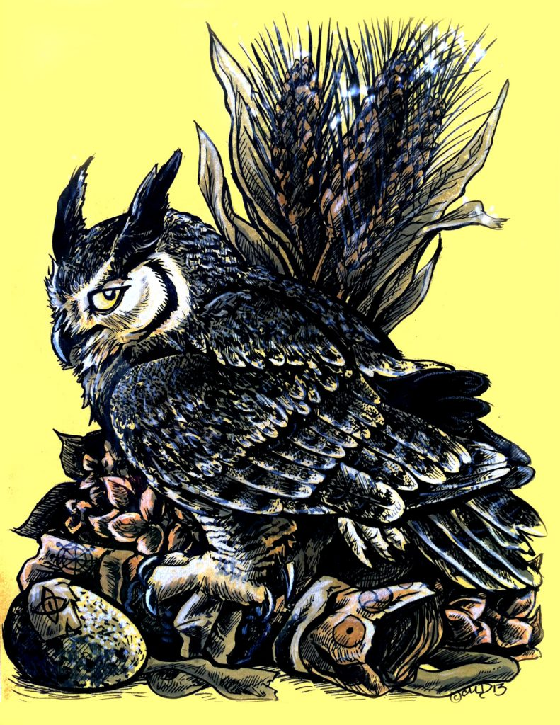 Owl Illustration by Mallory Dorn from Trinity Animation.