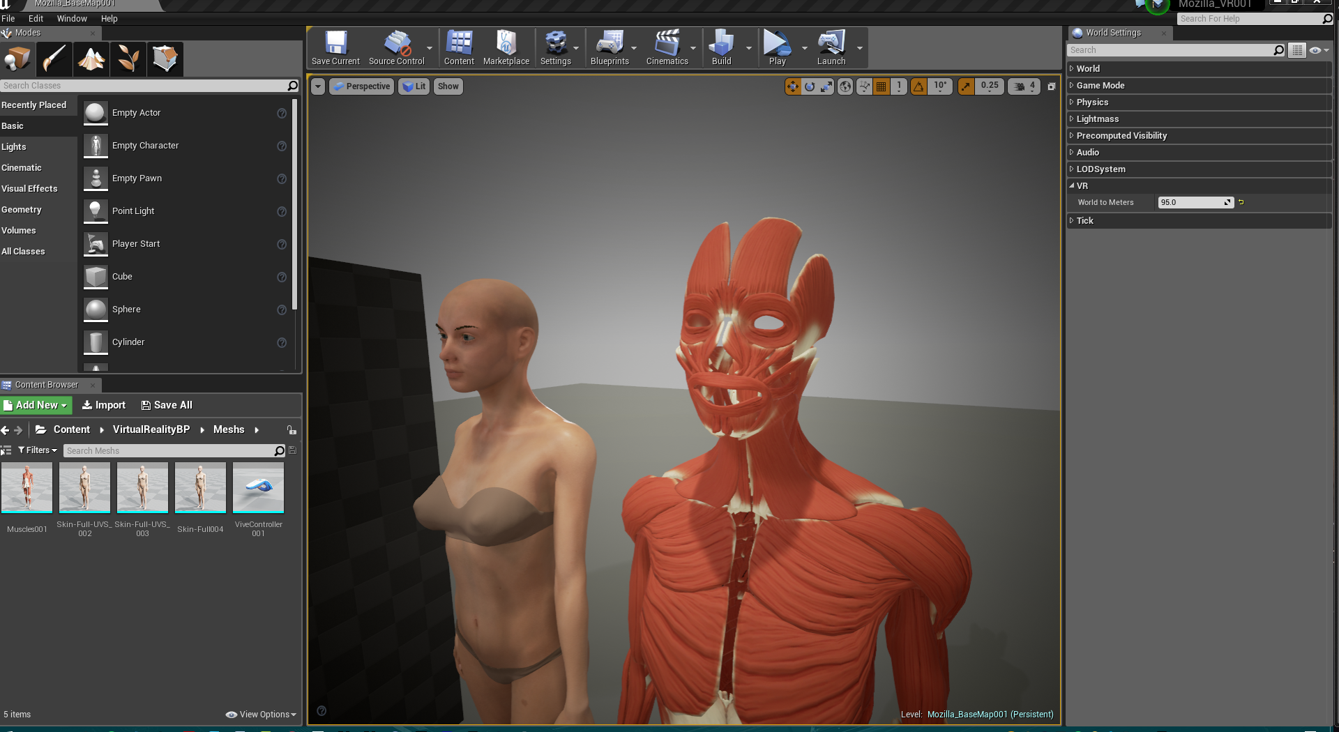 VR anatomy including muscles.