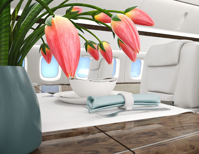A private jet interior rendering with a large sofa at right and meeting table area at left, with sunlight dappling the interior through a few open windows.